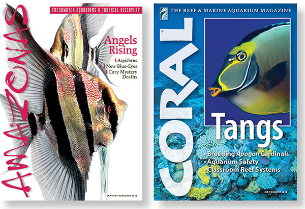 Flagship publications of Reef to Rainforest Media: the world's premier aquarium magazines in the English language.