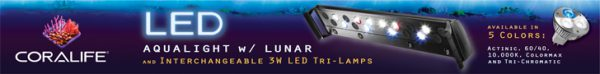 Coralife LED Aqualight with Interchangeable 3W LED Tri-Lamps - watch the video now!