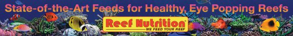 State-of-the-Art Feeds for Healthy, Eye Popping Reefs - Reef Nutrition - WE FEED YOUR REEF