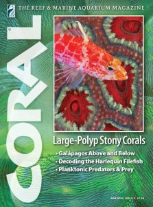 Click cover to order this back issue for your CORAL collection.