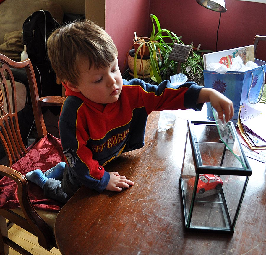 Ethan checks to see whether his choice of aquarium decoration fits the Deep Blue Betta Tank.