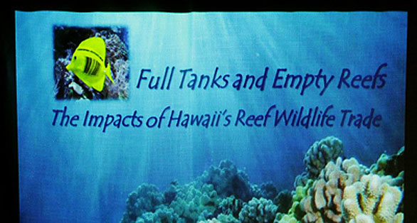 Poster from For the Fishes shown at the Operation Reef Defense Earth Day Launch, which included a presentation on reef wildlife trafficking for the aquarium trade at Deep Ecology Dive Center in Haleiwa, Oahu. Photo: Deborah Bassett / Sea Shepherd