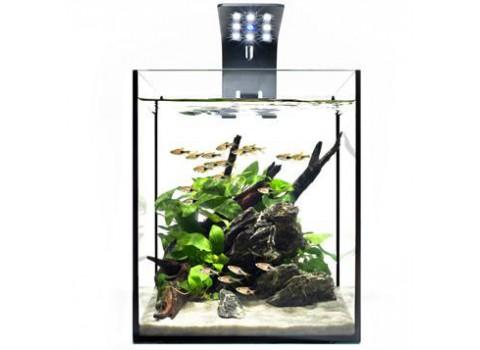 Ecoxotic's new EcoPico Planted Nano LED Aquarium System