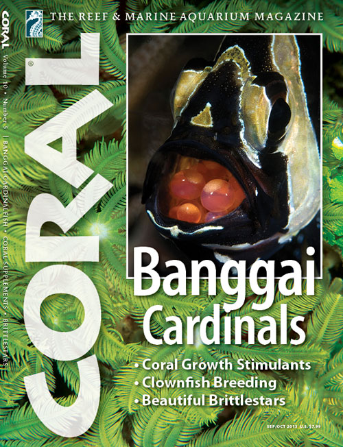 CORAL Magazine September/October 2013 Issue. Click to enlarge.