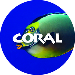 Collect the CORAL 2013 Button at Booth 507. Supplies limited.