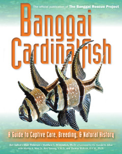 Banggai Cardinalfish, the official publication of the Banggai Rescue Project. Cover image by Dr. Matthew L. Wittenrich. Click to enlarge.