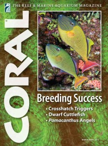 CORAL, March/April 2012, with Frank Baensch's cover story on breeding the Crosshatch Triggerfish.