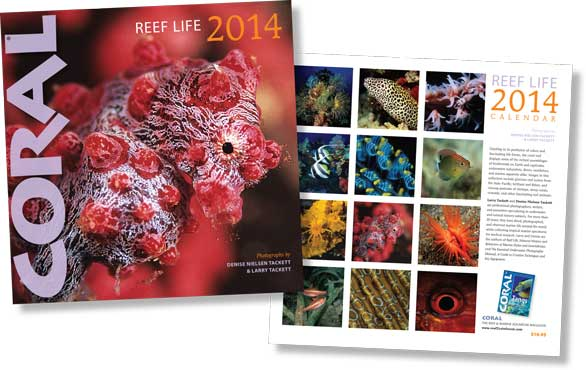CORAL Magazine's REEF LIFE Calendar, a perennial favorite of marine aquarists since 1999.
