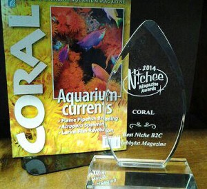 CORAL with its first Nichee Magazine Award.