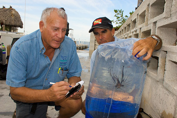 John Halas (Florida Keys National Marine Sanctuary), left, and Lad Akins (REEF) with the first lionfish reported and removed from the Florida Keys in January 2009.