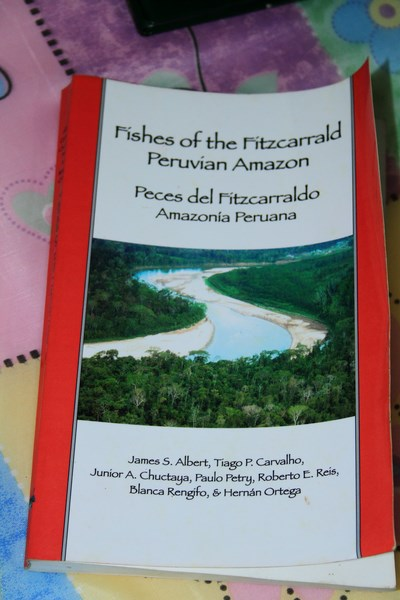 Fishes of Peruvian amazon