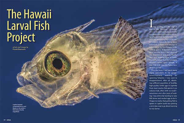 The Hawaii Larval Fish Project - By Frank Baensch | Coral Magazine, March/April 2014