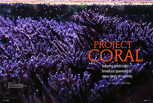 Project Coral – By Jamie Craggs | Coral Magazine, March/April 2014