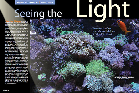 Seeing The Light—The conversion from years of metal halide use to radically new LEDs – By Mike Paletta | Coral Magazine, May/June 2014