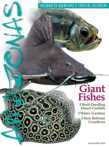 "Rachel O'Leary's article ""The Outdoor Aquarist"" appears in this issue - Click cover to order this back issue for your AMAZONAS collection."