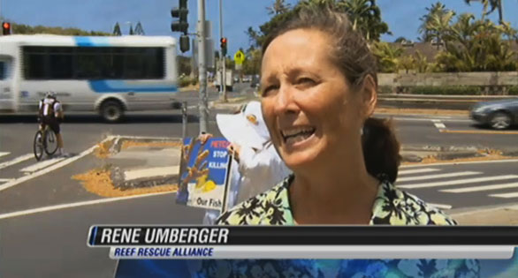 In a street protest in 2012, Rene Umberger called for an end to the aquarium trade. Hawaii News Now.