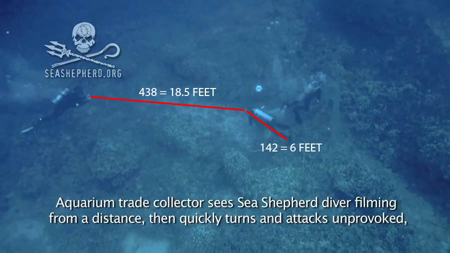 Based on informal, amatuer analysis of video footage released by Sea Shepard, CORAL Magazine editor Matt Pedersen believes Umberger may have approached to within roughly 18.5 feet of the fishermen. Umberger continues to drift towards them by the time Lovell reacts and rushes Umberger.