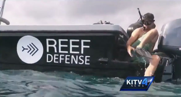 Reef Defense boat near the scene of the incident. Screen image from KITV Hawaii.