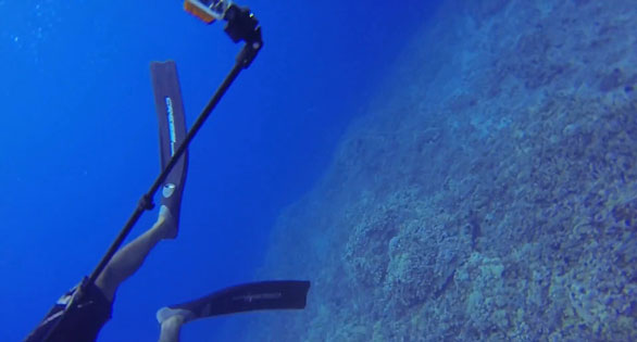 Shot of Rene Unberger's GoPro underwater camera taken by another member of the Reef Defense team that approached the fishermen. Just going holo holo, Reef Defense claims, not trying to provoke an incident.