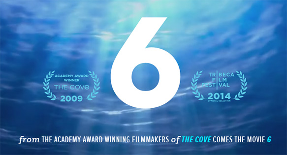 "Screenshot of the website for the Ocean Preservation Society's forthcoming film, ""6""."