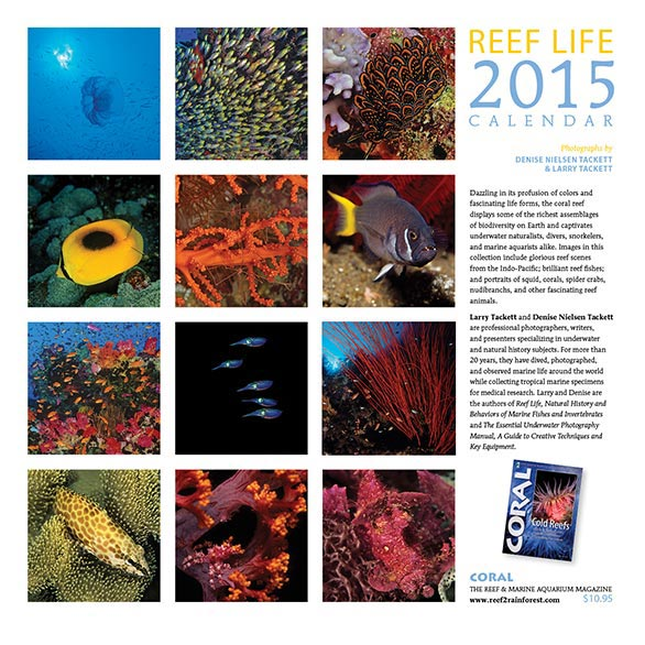 REEF LIFE 2015 Wall Calendar (Back Cover).