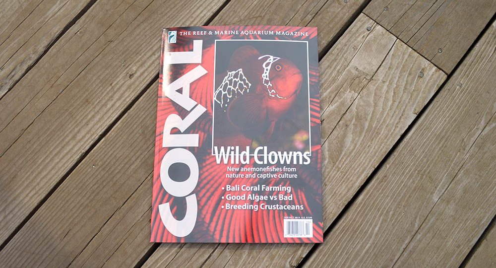 Coral Magazine – Wild Clowns – the September/October 2014 Issue