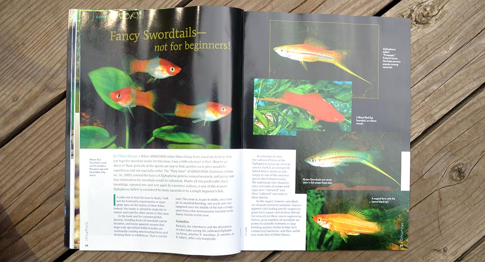 Fancy Swordtails - Not For Beginners! By Tobias Bernsee