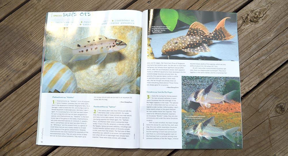 Chalinochromis sp., Pseudacanthicus sp., Corydoras sp., Corydoras sp. C86, Garra sp., Cryptocoryne annamica