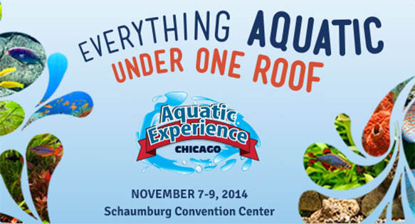The Aquatic Experience, November 7-9, 2014