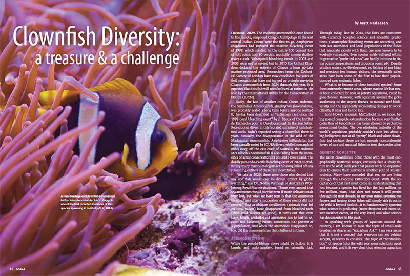Clownfish Diversity: A Treasure & A Challenge - CORAL Magazine, November/December 2014