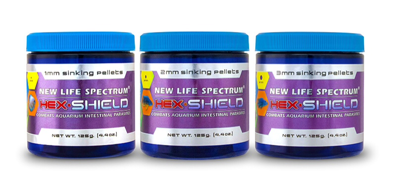 New Life Spectrum®'s new Hex-Shield medicate aquarium food.