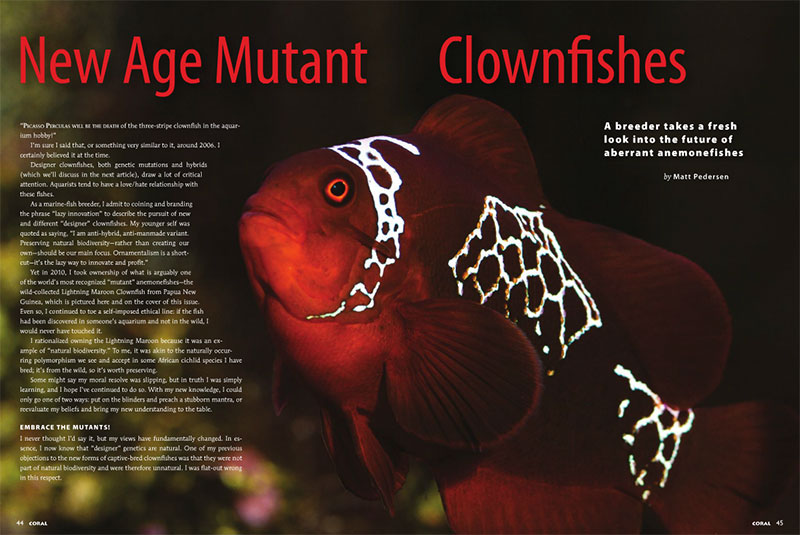 New Age Mutant Clownfishes - CORAL Magazine, September/October 2014