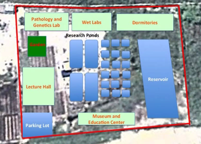 The approximate layout of the Amazon Research Center for Ornamental Fishes when all 3 building phases are funded and built.