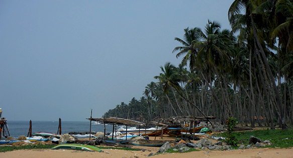 The fishing village of Marawila on Sri Lanka's Southwestern coast