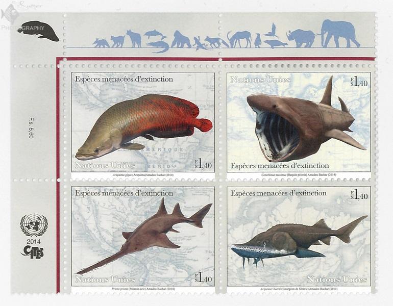 FishStampPart1