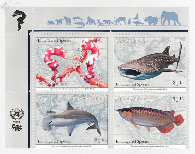 FishStampPart3