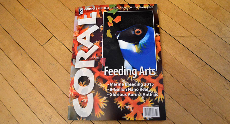 "The cover of ""Feeding Arts"", our January/February 2015 issue of CORAL Magazine. Volume 12, Number 1."