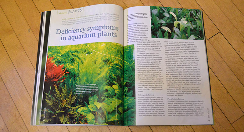 "Maike Wilstermann-Hildebrand shares with readers the symptoms for a myriad of chemical deficiencies in the article ""Deficiency symptoms in aquarium plants"""
