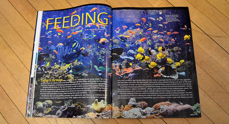 """FEEDING"", by Dr. Deiter Brockmann, kicks off this issues' cover feature articles."