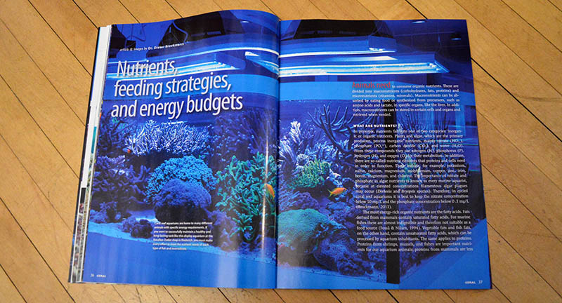 """""""Nutrients, feeding stragegies, and energy budgets"""", by Dr. Dieter Brockmann, looks at energy and nutrition from the bottom up."""