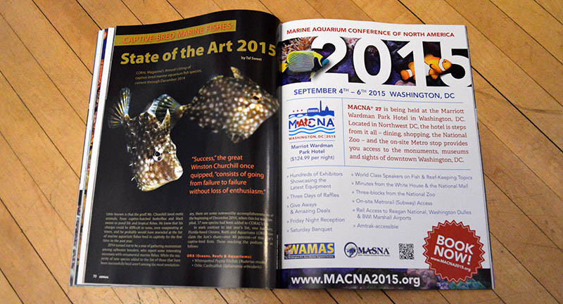 """Captive Bred Marine Fishes: State of the Art 2015"", by Tal Sweet, returns to our print edition this year with a look at all the accomplishments of 2014, and an up-to-date list of all marine aquarium fish species that have been bred in captivity to date. You can read this article for free online at www.Reef2Rainforest.com!"
