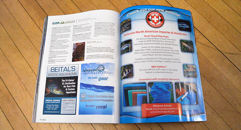 The CORALexicon covers technical terms that appear in articles in this issue!