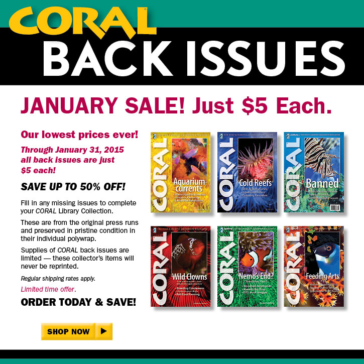CORAL Magazine Back Issue Sale 2015 - Just $5 each through January 31st, 2015. SHOP NOW!