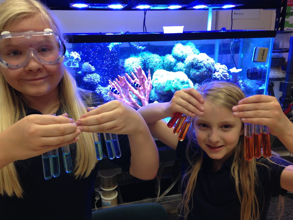 Two female students stand in front of a coral reef tank holding test tubes. One is wearing goggles. The results show that the aquariums have a stable population of nitrifying bacteria and can be stocked with fish.