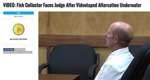 Aquarium fisherman Jay Lovell being sentenced in a Hawaiian court for an underwater attack on in what he said was a move to protect himself. Image: Screen shot from Big Island Video News. Click to expand. See Sources below to view full view report.