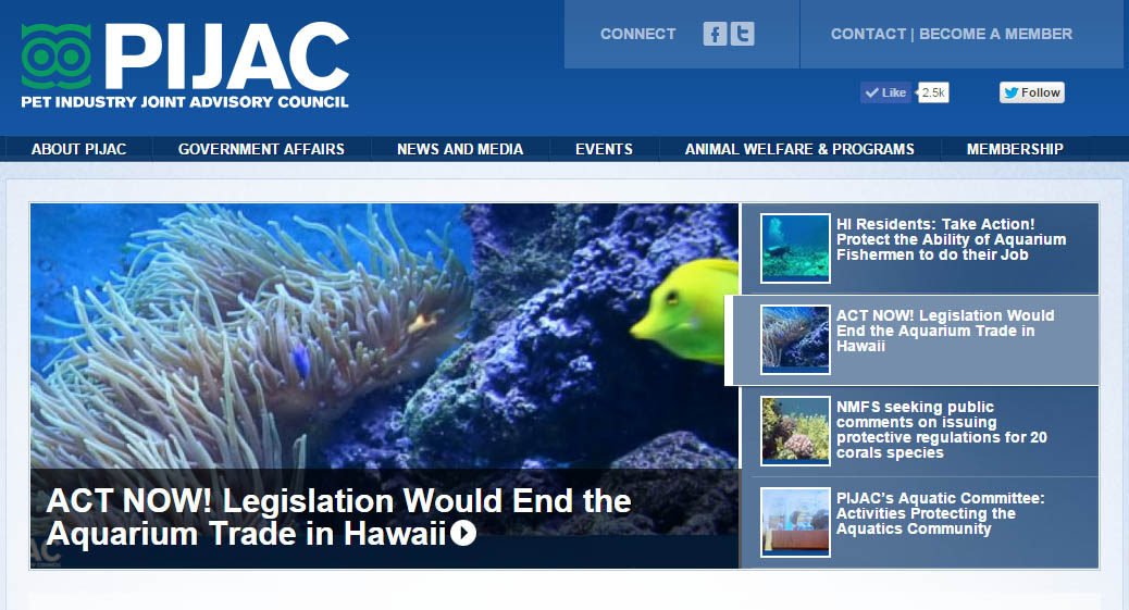 PIJAC issues Action Alert for Hawaii Aquarium Trade