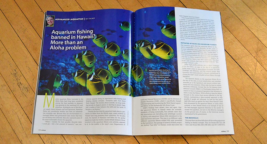 "CORAL Magazine Sr. Editor Ret Talbot brings another report in the ongoing battle to end aquarium fishing in Hawaii. Don't miss his in-depth update; ""Aquarium fishing banned in Hawaii? More than an Aloha problem"""