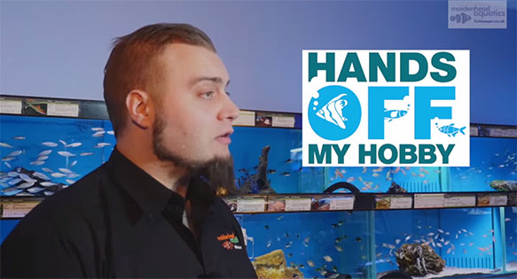 Maidenhead Aquatics discusses OATA's Hands Off My Hobby campaign in a new video.