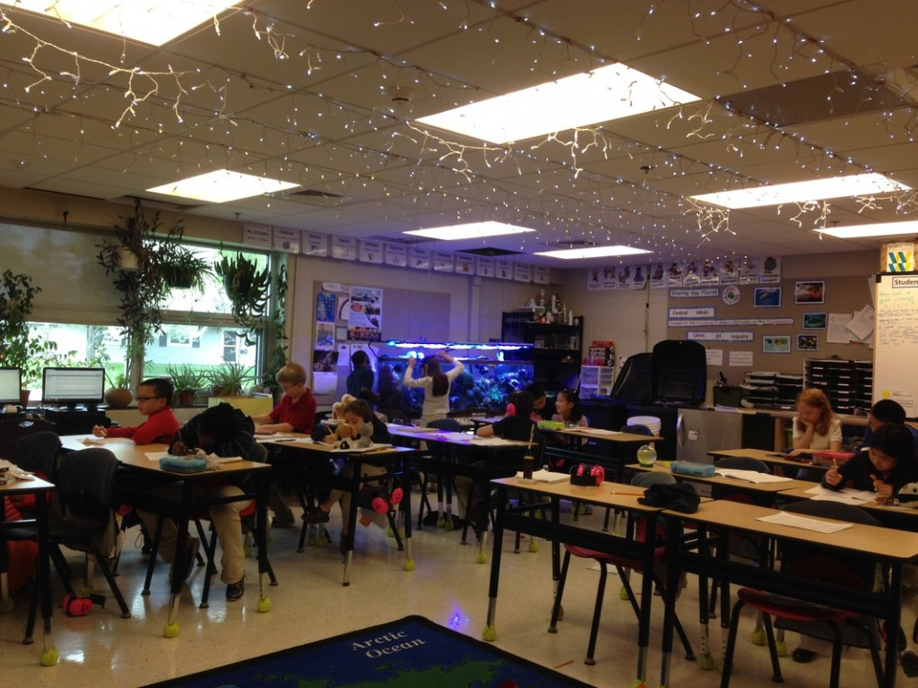 Third grade students are seated at desks working. In the back corner is a large aquarium setup and two students are working on the tank. The students at desks don't appear distracted.
