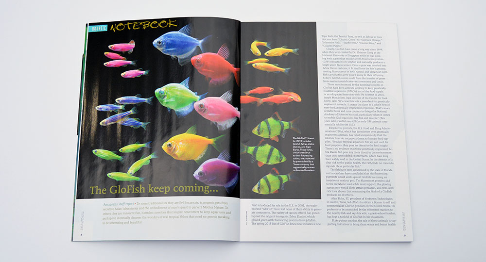 Our aquatic notebook kicks off revisiting GloFish which sparked great debates when we noted the news release of a new variety last month on our Facebook page.